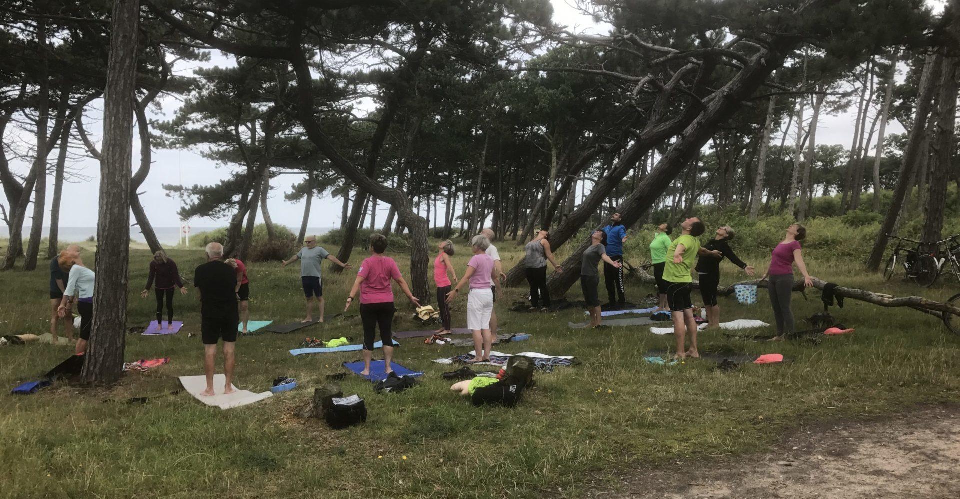 yoga i det fri